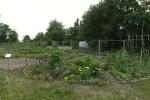 090610_interkultgaerten_panor_10.jpg