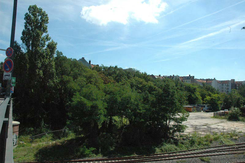 Der Zauberwald von der Monumentenbrücke aus gesehen